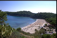 Fetovaia beach - Elba Island beaches - Tuscany sea vacation.